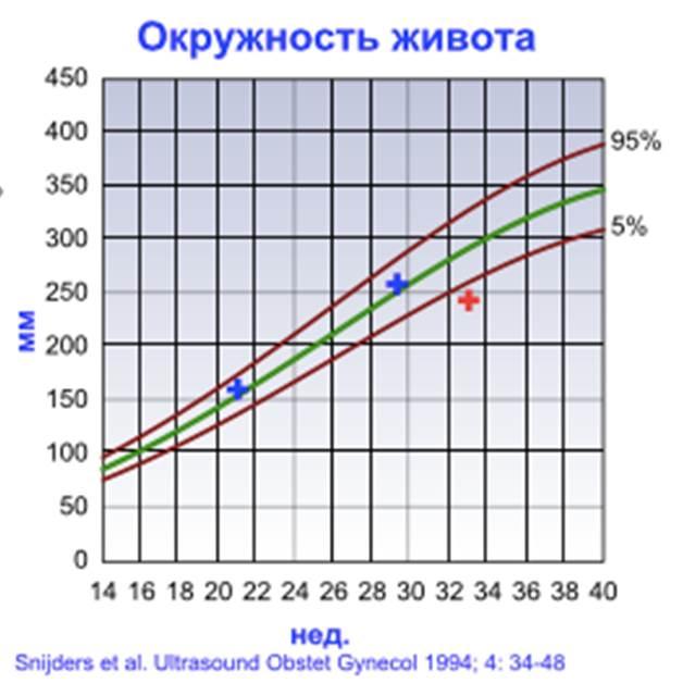 dop-1-4-6.jpg